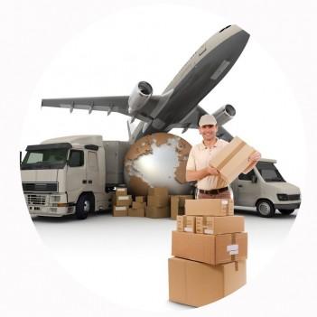 Seguro de Cargas e Transportes
